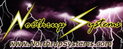 NS Logo 2 com